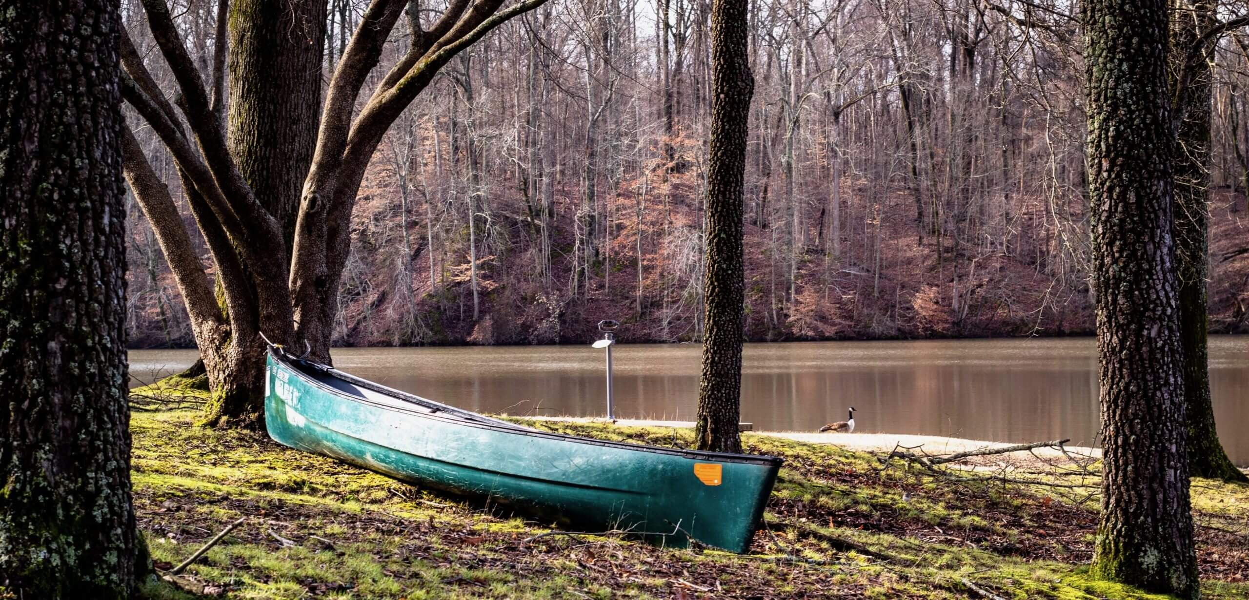 Piedmont Delights Boat Tree Wood Tradition