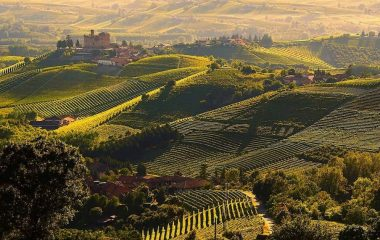 Are you ready to discover the Basso Piemonte?